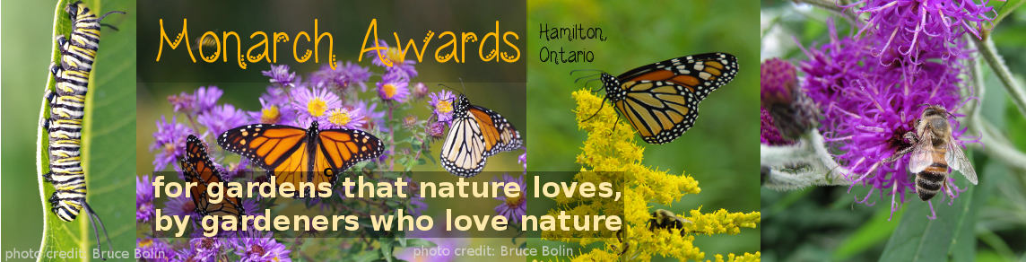 Monarch Awards Hamilton