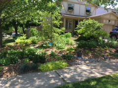 photo of Monarch Award recipient Janet Mackey's front garden