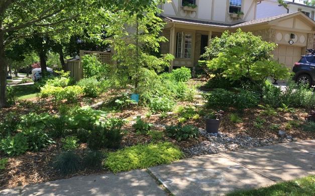 photo of Monarch Award recipient Janet Mackey's front garden