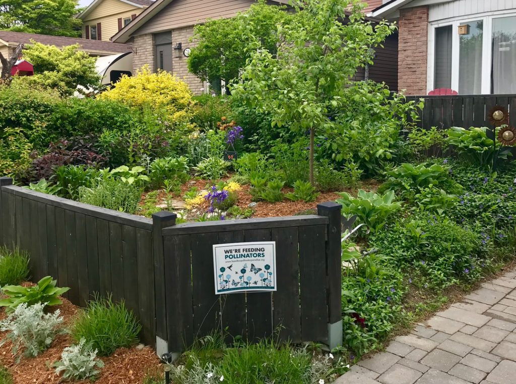 example of award-winning garden
